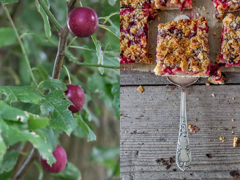 Mirabellen-Kuchen und fruchtiges Chutney mit Mirabellen