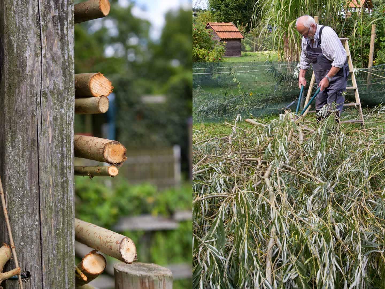 Garten-DIY: Zaun und Rankhilfe aus Weiden