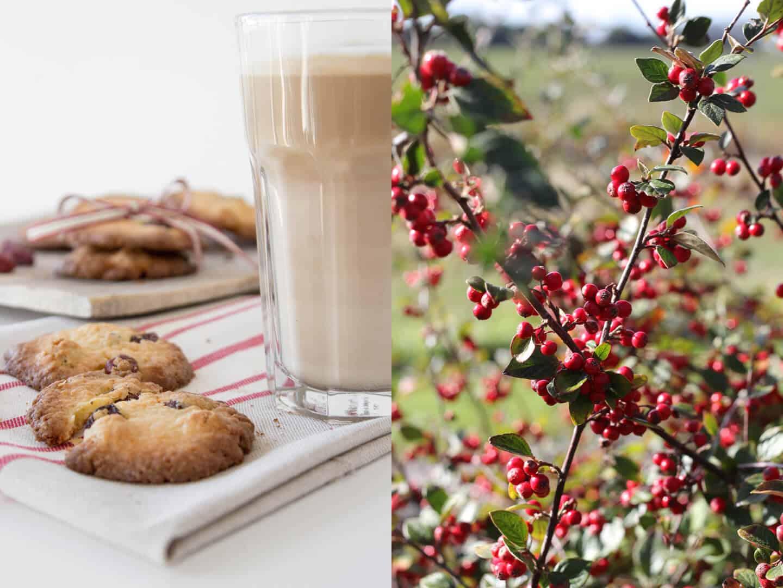 Kekse Rezept – Ein Teig, viele Varianten